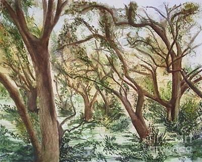Descanso Oaks Art Print