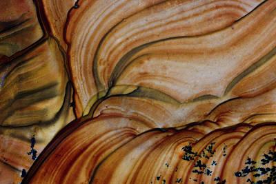 Deschutes Photograph - Deschutes Jasper From Oregon by Darrell Gulin