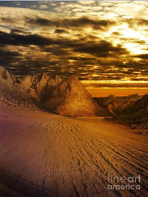 Desert Sunset Wall Art - Pyrography - Deseret Landscape by Jelena Jovanovic
