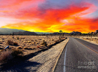 Photograph - Desert Aglow by Glenn McCarthy Art and Photography