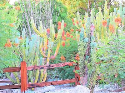 Photograph - Desert Blooming by Lisa Dunn