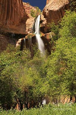 Photograph - Desert Canyon Waterfall by Adam Jewell