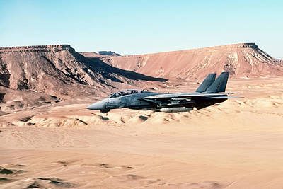 Jets Photograph - Desert Cat by Peter Chilelli