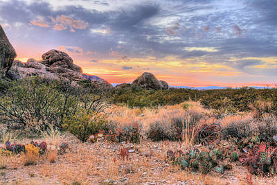 Photograph - Desert Color by JC Findley