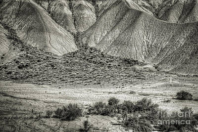 Photograph - Desert by David Waldrop