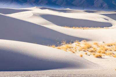 Art Print featuring the photograph Desert Design by Kristal Kraft