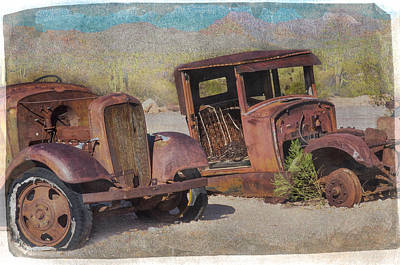 Photograph - Desert Discards by Diane Wood