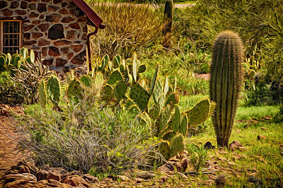 Mark Myhaver Royalty-Free and Rights-Managed Images - Desert Dream by Mark Myhaver