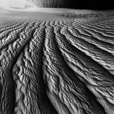 Desert Dreaming 2 Of 3 Art Print