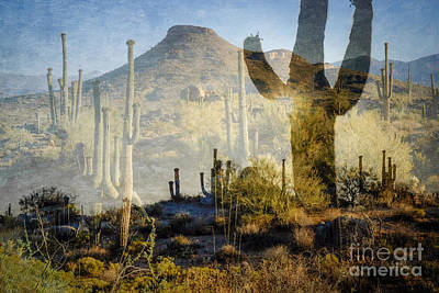 Photograph - Desert Dreams At Browns Ranch Mcdowell Sonoran Preserve by Marianne Jensen