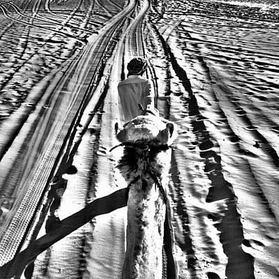 Skylines Wall Art - Photograph - Desert by Ernesto Cinquepalmi