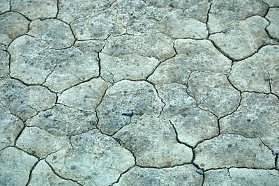 Alvord Desert Wall Art - Photograph - Desert Floor by David Weintraub