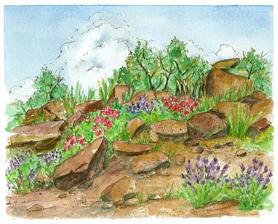 Drawing - Desert Flora by Cathie Richardson