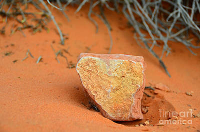 Photograph - Desert Heart Rock by Debra Thompson