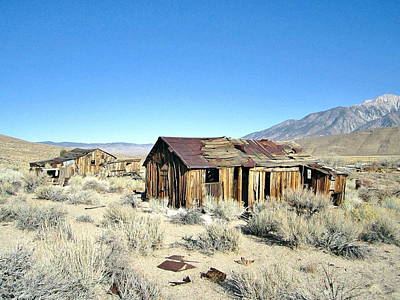 Photograph - Desert Heat by Marilyn Diaz