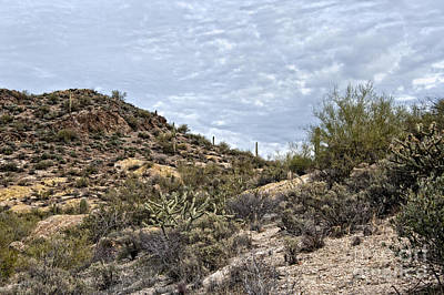 Photograph - Desert Hills Apache Trail by Lee Craig