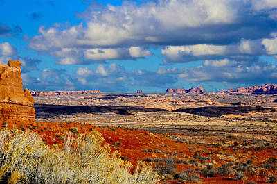 Photograph - Desert Landscape by Bonnie Fink