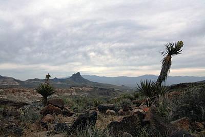 Photograph - Desert Landscape II by Gilbert Artiaga