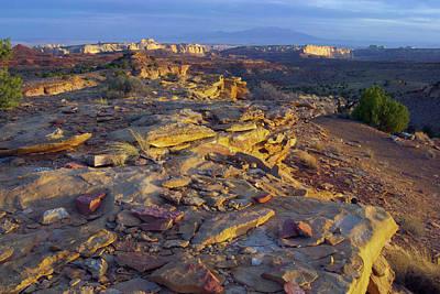 Desert Landscape, San Rafael Reef, Utah Art Print
