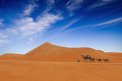 Camel Wall Art - Photograph - Desert Life .. by Hesham Alhumaid