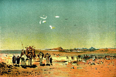 Camel Photograph - Desert Mirage by Collection Abecasis