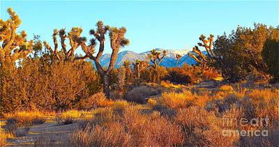 Desert Mountain Art Print