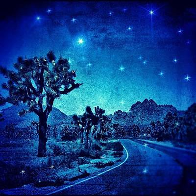 Desert Photograph - #desert #night #nationalpark #darkness by Jill Battaglia