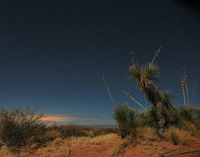 Photograph - Desert Nights by JC Findley
