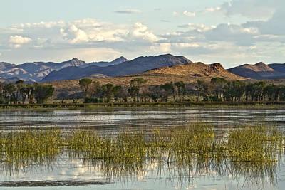 Photograph - Desert Oasis by Gigi Ebert