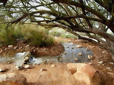 Mesquite Tree Photograph - Desert Oasis by Karyn Robinson