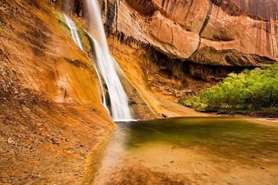 Photograph - Desert Oasis by Michael Blanchette