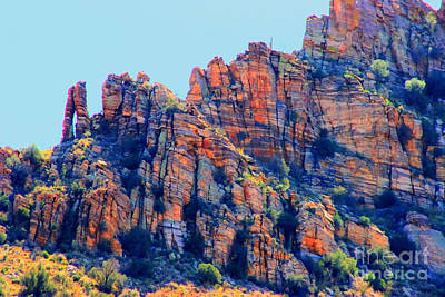 Coronado National Forest Photograph - Desert Paint by Tap On Photo