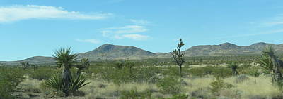 Photograph - Desert Panoramic by Kay Novy