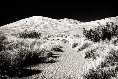 Photograph - Desert Path by John Rizzuto