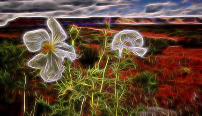 Desert Primrose 2 Art Print
