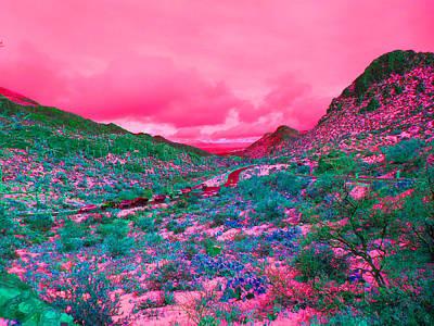 Desert Red Print by Joseph Wiegand
