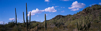Desert Road Az Art Print by Panoramic Images