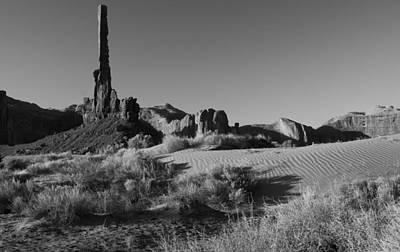 Photograph - Desert Scene by Paul Miller