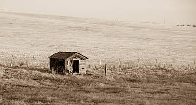 Photograph - Desert Shed by Guy Whiteley