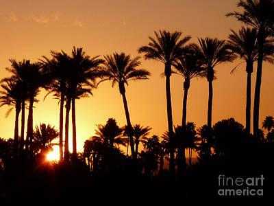 Photograph - Desert Silhouette Sunrise by Deborah Smolinske