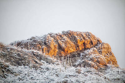 Photograph - Desert Snow At Sunrise by Diane Enright