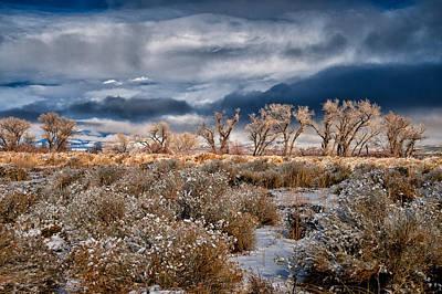 Desert Snow Print by Cat Connor