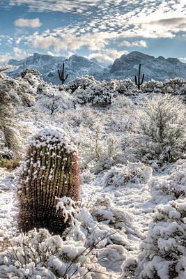 Photograph - Desert Snow by James Capo