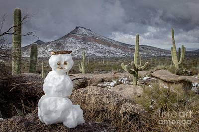 Photograph - Desert Snowman by Marianne Jensen