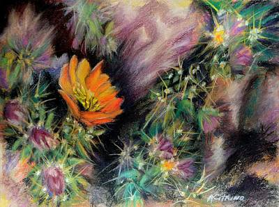 Desert Spring Impression Of   Pastel Art Print by Antonia Citrino
