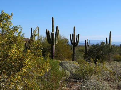 Granger - Desert Spring by Laurel Powell