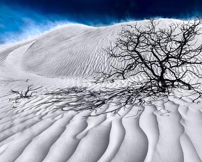Australia Landscape Photograph - Desert Storm by Julian Cook
