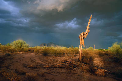 Photograph - Desert Storm by Tam Ryan