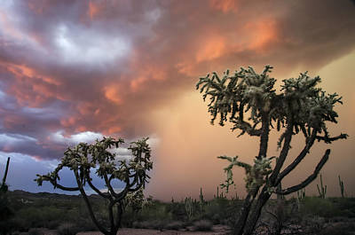 Photograph - Desert Storms In Central Arizona 2 by Dave Dilli