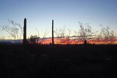 Photograph - Desert Sunrise by Susan Woodward